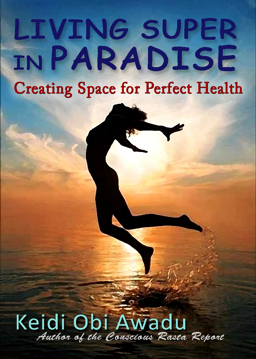 Living Super in Paradise Book