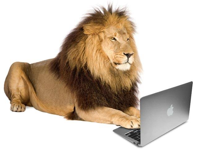 LionWrites