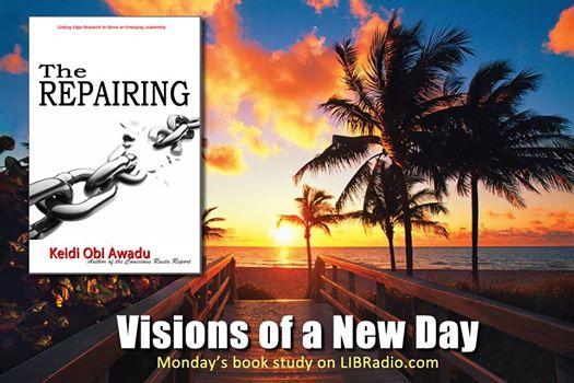 The Repairing Visions