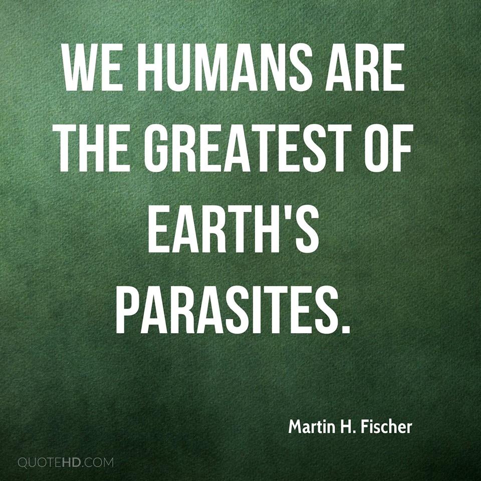 Human Parasites